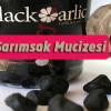 Siyah Sarımsak Faydaları