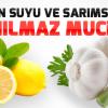Şifa Kaynağı Limon Sarımsak Kürü