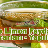 Nane Limon Faydaları – Yararları – Yapılışı