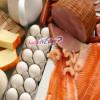 Protein Diyeti İle Sağlıklı Zayıflama