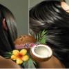 Hindistan Cevizi Yağı Saç Maskesi
