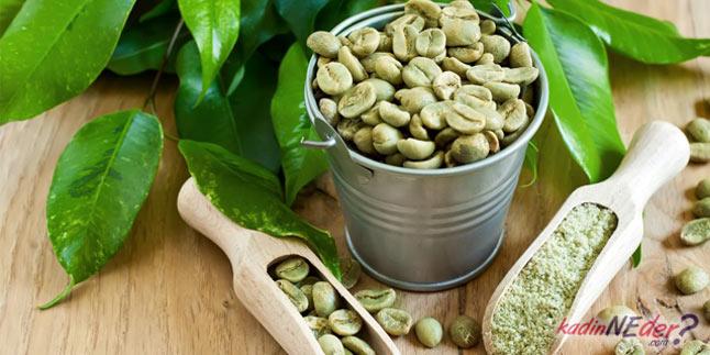 yeşil kahve zayıflama