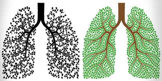 akciğerler nasıl temizlenir