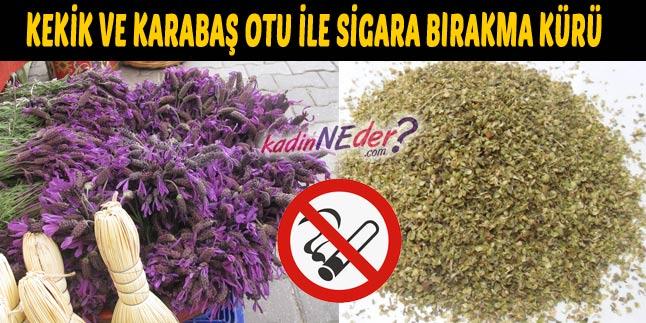 sigara bırakma kürü