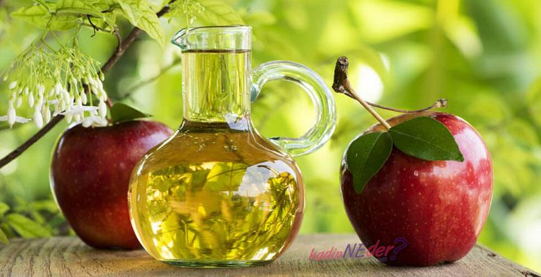 https://image.shutterstock.com/image-photo/apple-cider-vinegar-made-fermented-450w-587034113.jpg